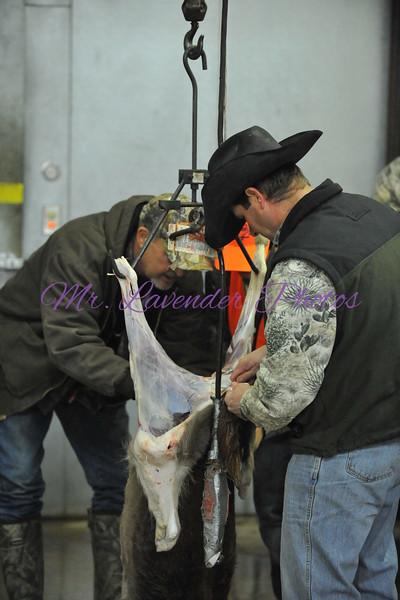 Louie Schreiner Youth Hunt YO Ranch Jan 15, 2011