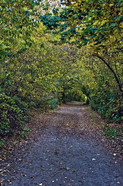 leavenworth_trail_HDR4.jpg