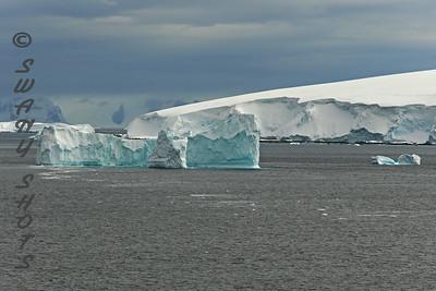 Antarctica/South America 2014