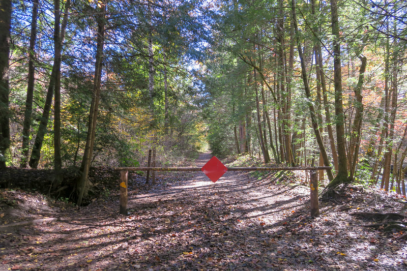 Art Loeb Trailhead @ Davidson River Campground -- 2,150'
