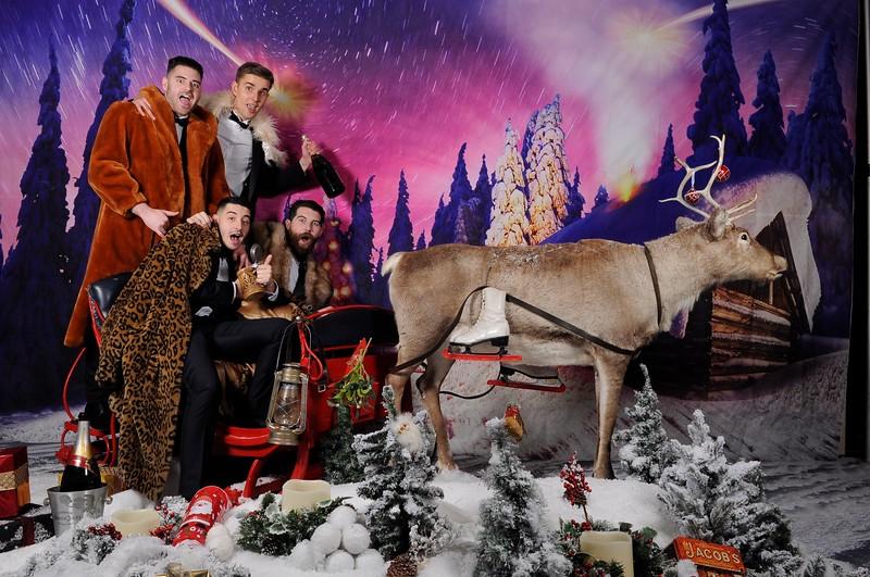 phototheatre reindeer christmas 1.jpg