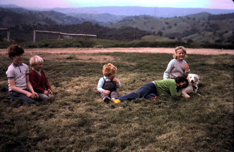 1973-9 (4) David 9 yrs 9 mths, Andrew 4 yrs 1 mth, Allen 2 yrs 4 mths, Susan 8 yrs 2 mths with Natalie Grosby.JPG