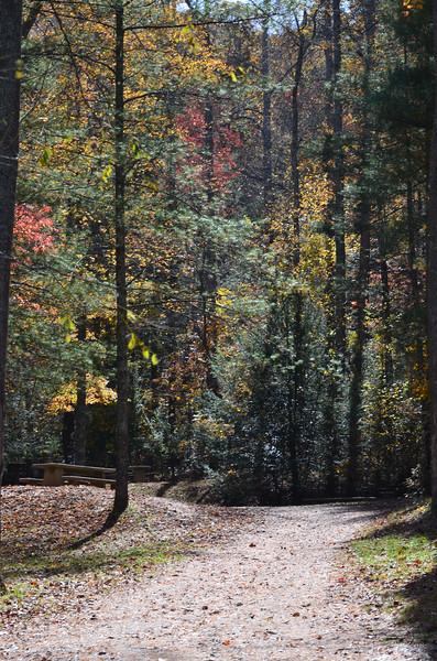 © Dale Breedlove - Camping '12 28.jpg