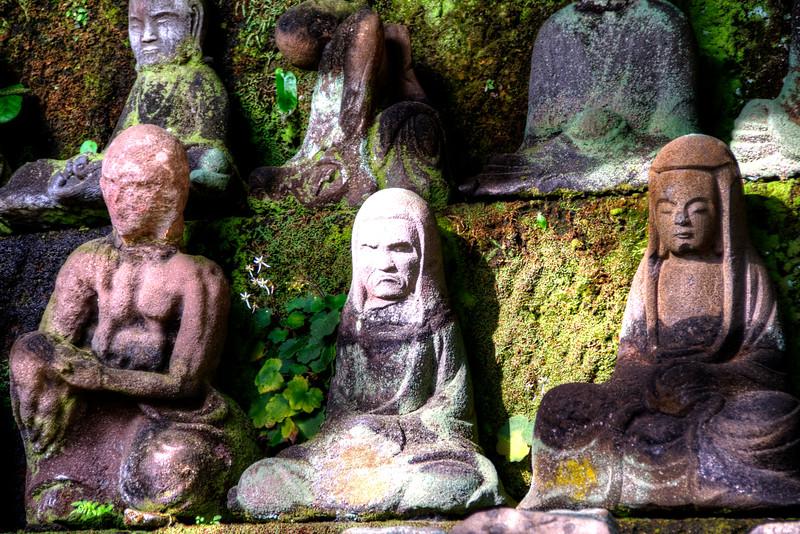 The Buddas