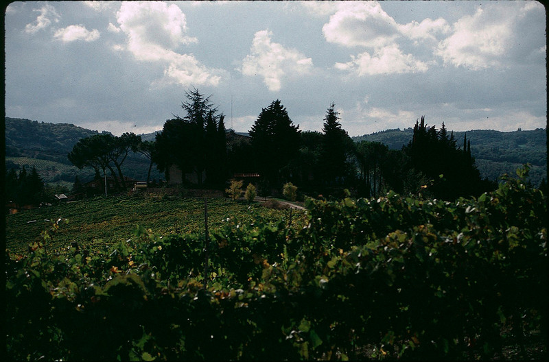 ItalyNapa1_029.jpg