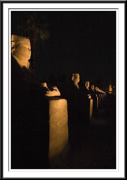 sphynx-night-luxor (55687649).jpg