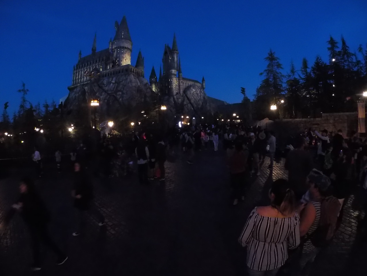 An Evening at Hogwarts 05-29-2017