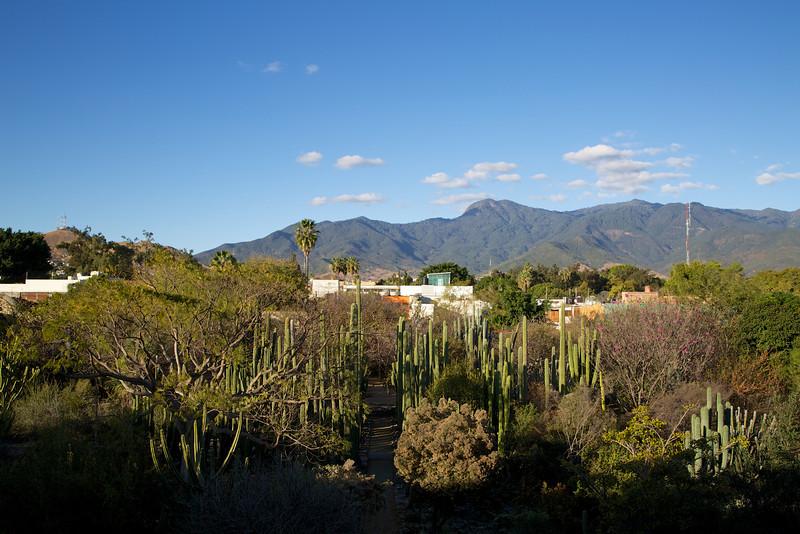 Roewe_Mexico 103.jpg