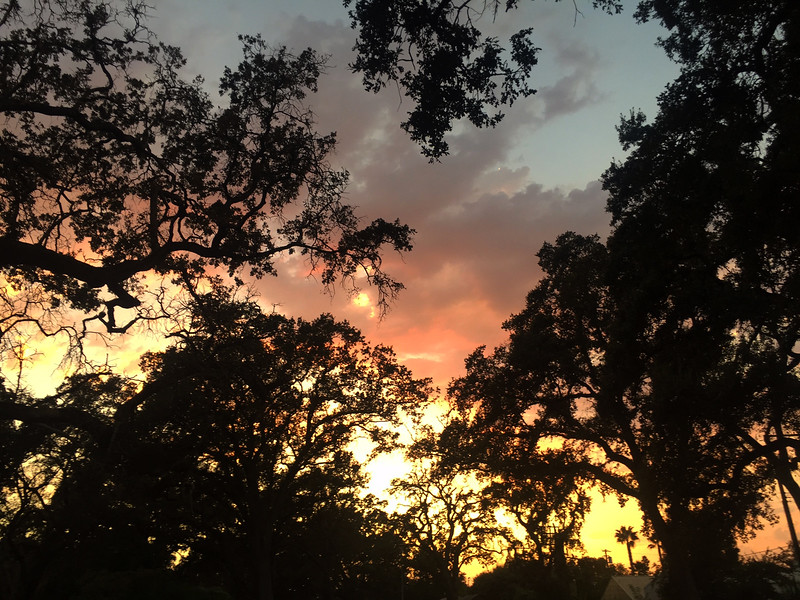 park sunset.jpg