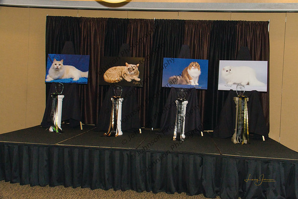 CFA Great Lakes Regional Banquet 2019 - Candid, Akron, OH