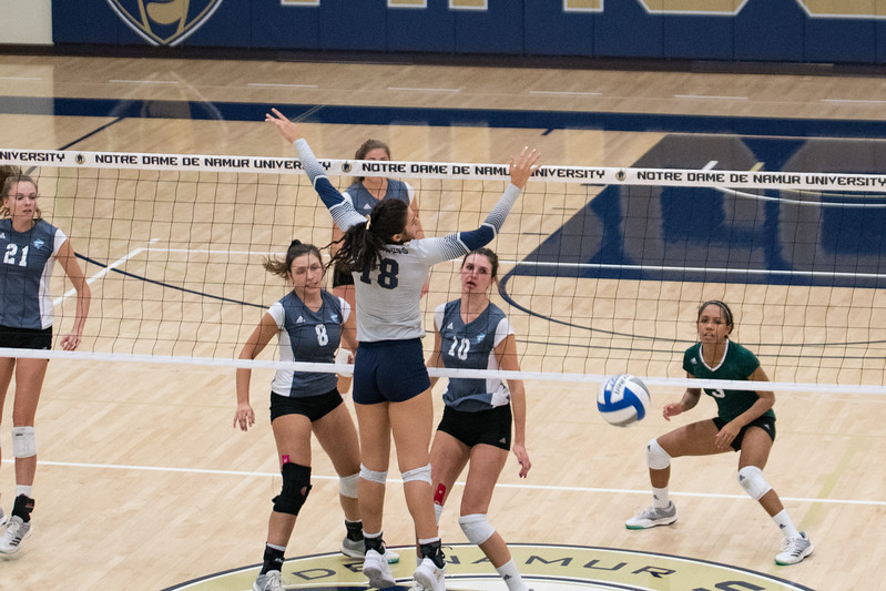 HPU Volleyball-92087.jpg