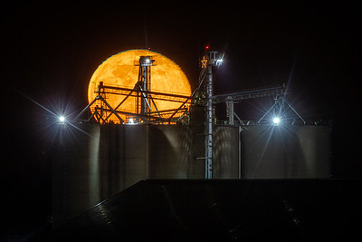 Moon Rise/Set