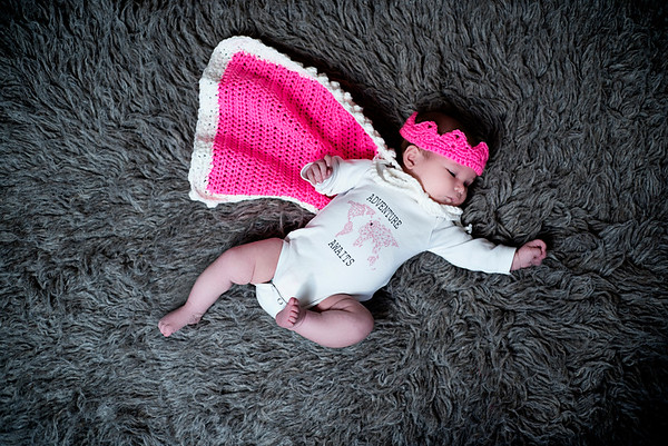 Williamsport Newborn Photographer : 11/14/18 Matilda