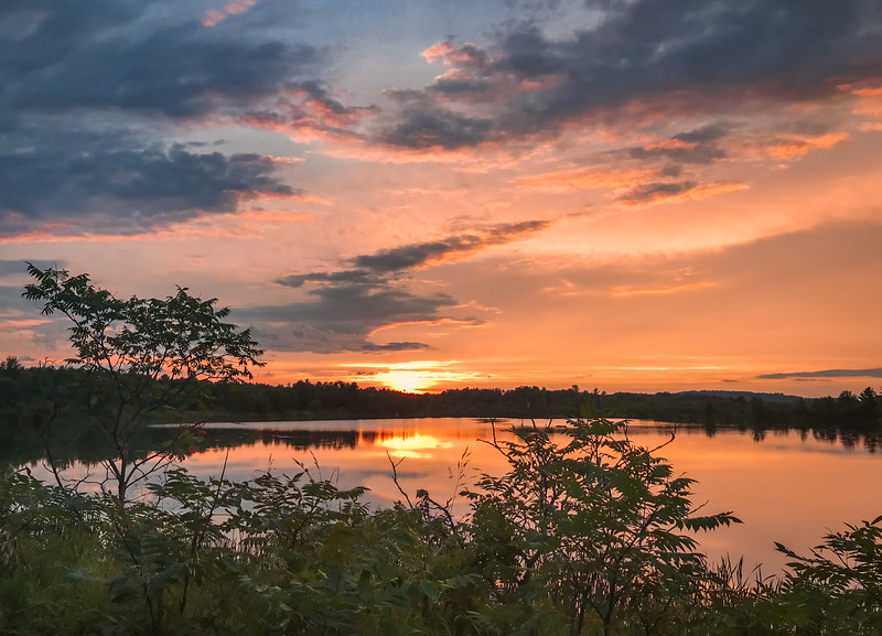 Pickering Ponds sunset3