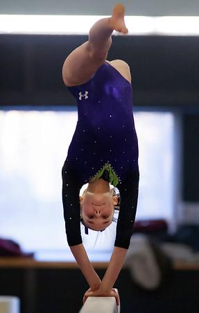 2017 Level 6-10 Gymnastics State Championship