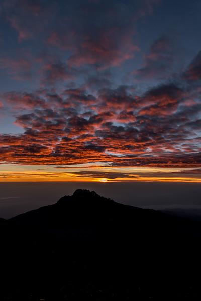 Kilimanjaro_Feb_2018-66.jpg