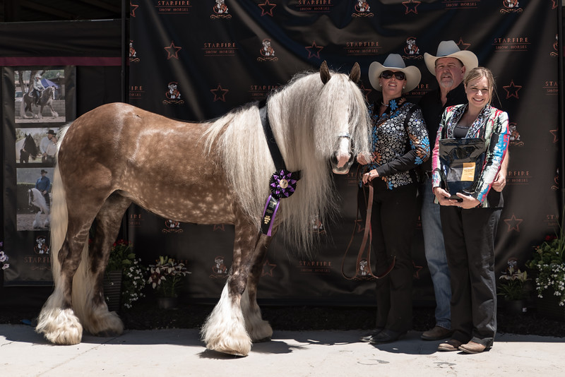 2016 FHC Utah Gypsy Show