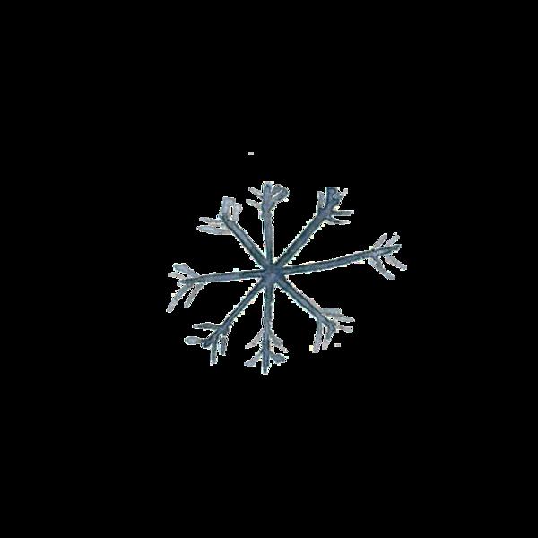 winter_essentials30.png