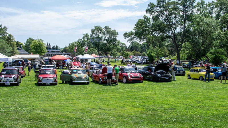 Minis at the All British Car Day