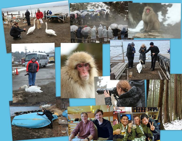 Day 4, Jan 8, Weds: Mt. Fuji & Swan Lake - Yudanaka Onsen