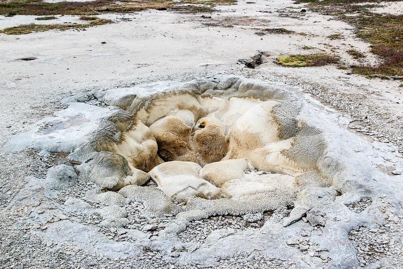 Shell Sprint - Yellowstone National Park