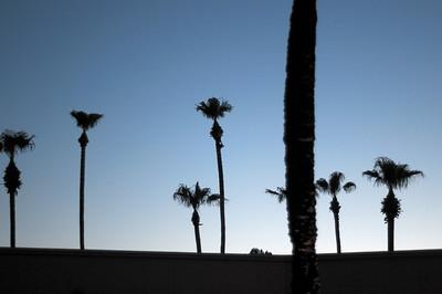 090806 Scottsdale