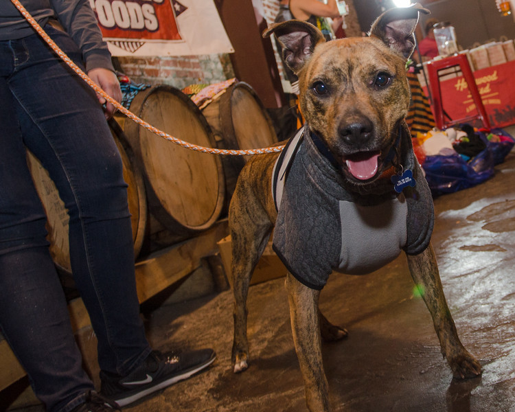 20171021_Pints_for_Pits-164.jpg