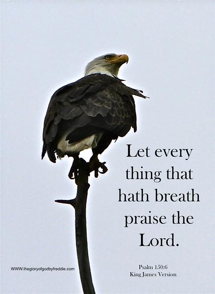 Psalm 150-6 .jpg