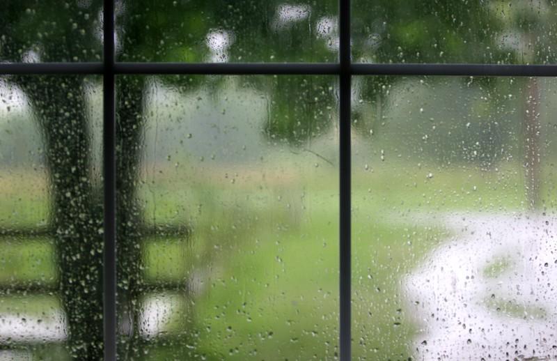 Copy of rain 006