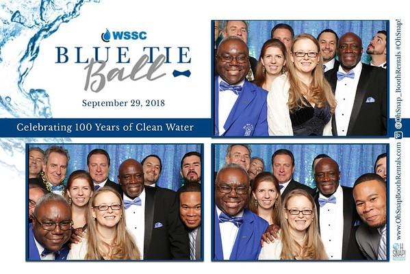 WSSC Blue Tie Ball