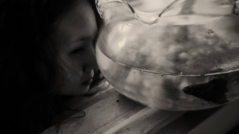 Tu-Nguyen-Destination-Wedding-Photographer-Europe-Videographer-13a.jpg