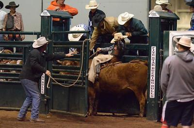 Build A Cowboy Saddle Bronc 09-22-13