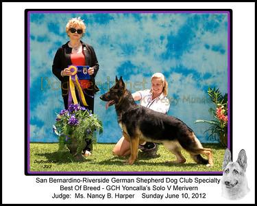 San Bernardino-Riverside German Shepherd Dog Club - June 10, 2012