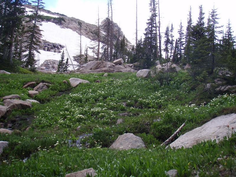Mount Zirkel Back Pack 071020100708_031.JPG