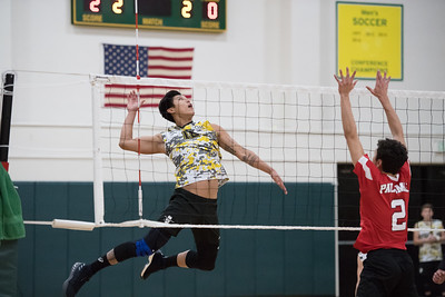 Men's Volleyball vs Palomar