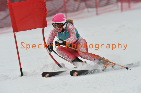 OFSAA 2012 Level II GS
