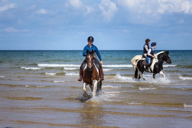 Holkham Beach Ride August 2019 (37).jpg