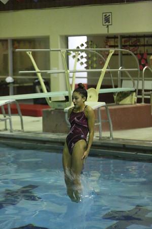 Twin City Invite - Diving Winners