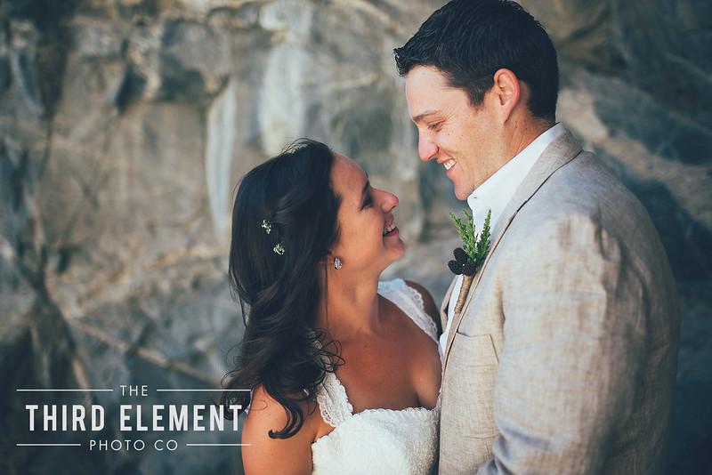 Third Element Photo Co Brittney + Errol Yosemite Wedding Hetch Hetchy San Francisco_0001.jpg