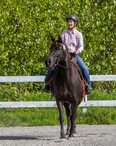 Equestrian - SVEA Dressage - Squamish, April 2016