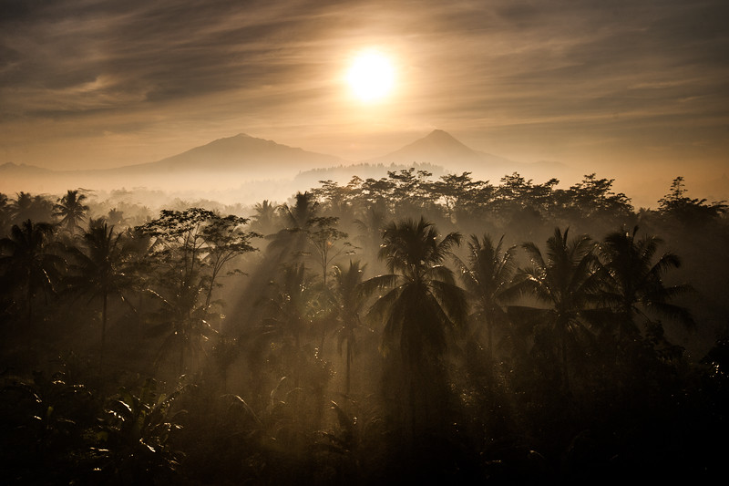 I was filming in Java for the BBC series 'Wonders of the Monsoon'... Eventually I found a window through the forest to shoot a timelapse of the sun rising over the twin volcanoes of Merapi-Merbabu #BBCEarth #EarthOnLocation #Indonesia #Java #Volcano #Twins #Sunrise #Misty #Morning