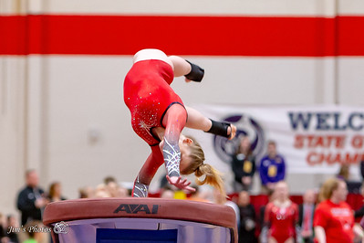 HS Sports - Gymnastics State - Verona/Edge Vault - Mar 02, 2019