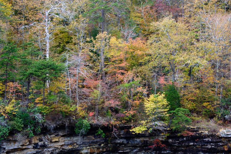 20131028-LIttle_River_Canyon-026.jpg