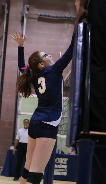 VCA Knights Volleyball 2013-6.jpg