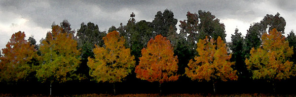 autumn bookmarksmall.jpg