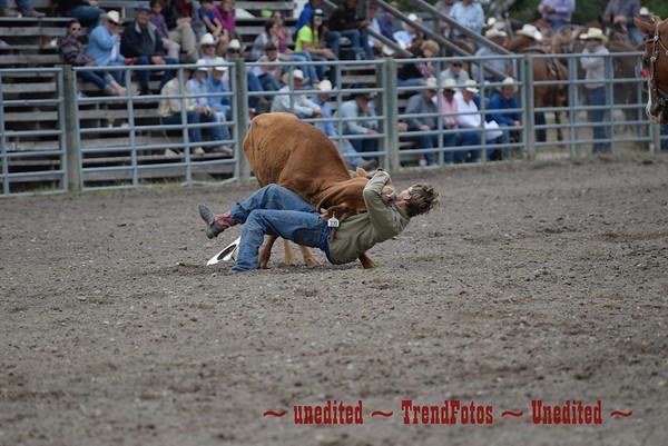 Augusta Exhibition Steer Wrestling