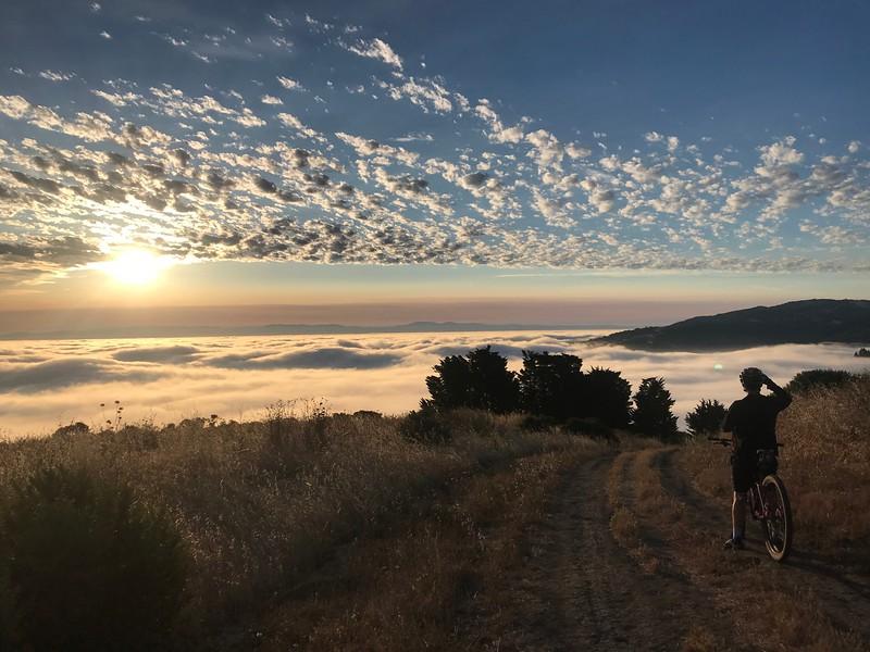 Sawn Mountain Bike Spring Ridge