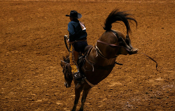 Fort Worth Rodeo 2009