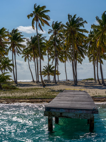 Oceanfront Pier and palm trees on the beach, Belize