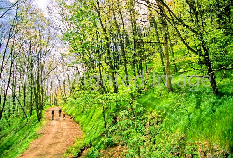 Great Smoky Mountains - Biking  - Heintooga  (in progress)